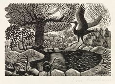 """Eric Ravilious (British, A heron landing, for a later edition of the """"Natural History of Selborne"""" by Gilbert White. Linocut Prints, Art Prints, Landscape Tattoo, Scratchboard, Black And White Drawing, Wood Engraving, Pictures To Paint, Woodblock Print, Natural History"""