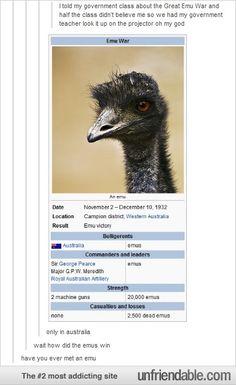 2 Machine Guns Versus 20,000 Emus