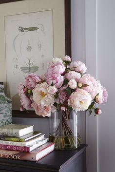 Historical illustrations of insects and floral arrangement of pink peonies by Ethan Allen