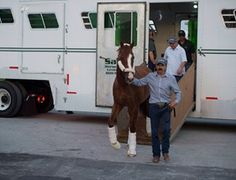California Chrome Arrives at Gulfstream Park https://www.racingvalue.com/california-chrome-arrives-at-gulfstream-park/