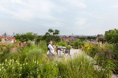 Rooftop garden with bistro table and side chairs from the Branch collection by Tribù