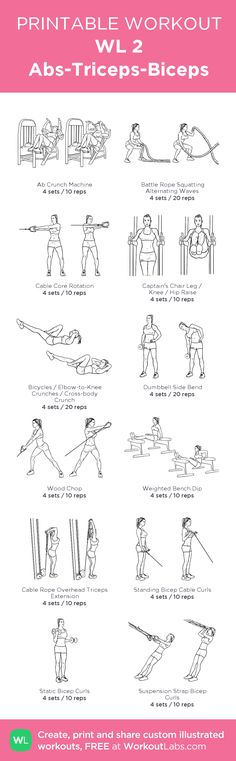 WL 2 Abs-Triceps-Biceps: my visual workout created at WorkoutLabs.com • Click through to customize and download as a FREE PDF! #customworkout