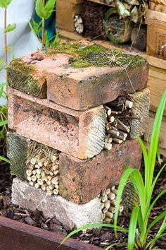 Bug hotel made from bricks and bamboo - © Lee Avison/GAP Pho.- Bug hotel made from bricks and bamboo – © Lee Avison/GAP Photos Bug hotel. Inse… Bug hotel made from bricks and bamboo – © Lee Avison/GAP Photos Bug hotel. Insect home. Garden Crafts, Garden Projects, Garden Art, Diy Garden, Glow Garden, Garden Drawing, Recycled Garden, Earthship, Back Gardens