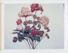 FLOWERS ANDY WARHOL