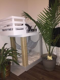 Bob's kitty condo/ cat condo/ catio/ cat apartment/ catdominium/ cat tree/ cat feeding station/ scratching post/ cat bed/ kitty hammock / kitty corner http://www.catonyard.com/product-category/beds-furniture/cat-houses-beds-furniture/ #catbed