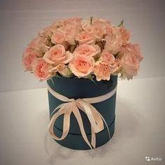 цветы в шляпной коробке москва: 14 тыс изображений найдено в Яндекс.Картинках