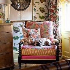"2,831 Likes, 26 Comments - @mag.giesheph.erd on Instagram: ""@botanicaetcetera Dogs at home No.3. Gert Voorjans @voorjans #dog #interior #decor #stylish…"""