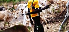 Welcome to Nonsoloaded's blog: Nasarawa crisis: 10 people feared dead, houses raz...