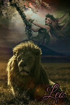 Astrology, Zodiac Signs, Lion, Animals, Leo, Animales, Animaux, Star Constellations, Lions