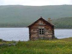 wild finland - Google-haku