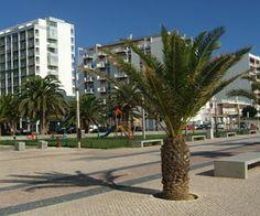 Quarteira, Portugal Algarve, Portugal, Places Ive Been, Beautiful Places, Places To Visit, Bucket, Spaces, Plants, Travel