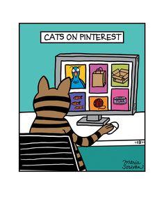 Cats on Pinterest Print