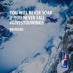 You Will Never Soar If You Never Fall #GIVESYOUWINGS