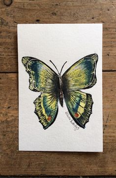 Butterfly hand painted watercolour and lino print Butterfly 3