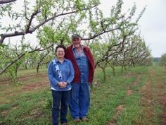 Arkansas Farmers: Jamison Peach Orchard