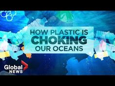 Plastic pollution crisis: How waste ends up in our oceans Ocean Video, Watch News, Plastic Pollution, On The Issues, Science Experiments Kids, Global News, Environmental Issues, What You Can Do, Global Warming