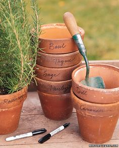 Herb Pots, Just use a sharpie to decorate the pot so you know which plant is what. Cute idea if your a novice like me!