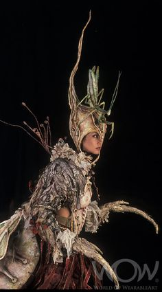 MANTITHEA, Jan Ker, Waikanae, Wellington. Off the Wall:WearableArt Up Close Touring Exhibition
