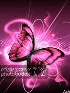 am thinking about getting this tattoo.I want a Pink butterfly for my oldest, a purple for my youngest and a patch of colorful flowers underneath them that they butterflies are taking flight off of. Butterfly Images, Butterfly Kisses, Butterfly Flowers, Beautiful Butterflies, Colorful Flowers, Butterfly Sayings, Purple Butterfly, Butterfly Background, Butterfly Wallpaper