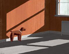 A Dog's Grace by Tatsuro Kiuchi, via Flickr