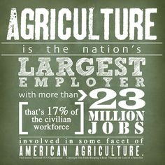 American Agriculture at it's finest