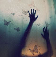 Butterfly Fly Away by VishakhaJindal #art #photography