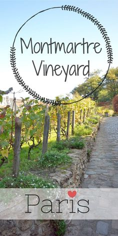 Don't miss the Vineyard in #Montmartre when visiting #Paris. If your citybreak happens in october, don't miss the Grape Harvest Festival at Montmartre around Sacre Coeur