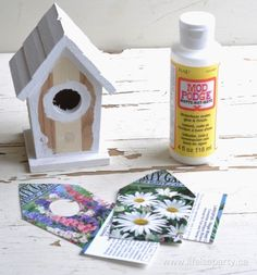 How to make a Fairy Garden House from a dollar store birdhouse and an old seed package.