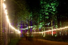 New Additions to 2011 Electric Forest Lineup Forest Festival, Electric Forest, Outdoor Lighting, Places To Go, Beautiful Places, Music Festivals, Gallery, Bucket, Life
