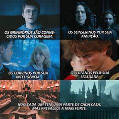 Blaise Harry Potter, Mundo Harry Potter, Harry Potter Tumblr, Harry Potter Anime, Harry Potter Film, Harry Potter Quotes, Harry Potter Love, Harry Potter Universal, Harry Potter World
