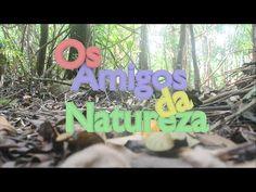 Os Amigos da Natureza - YouTube
