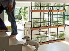 Room divider ideas diy using rectangular planters with plants to separate rooms: