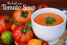 The best ever garden tomato soup - Holistic Squid