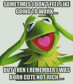 back to school Kermit Funny Kermit Memes, Haha Funny, Funny Jokes, Hilarious, Funny Minion, Funny Stuff, Work Memes, Work Humor, Frog Quotes