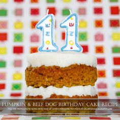 diy dog birthday cake recipe pumpkin and beef dog friendly layer on dog birthday cake recipe pumpkin
