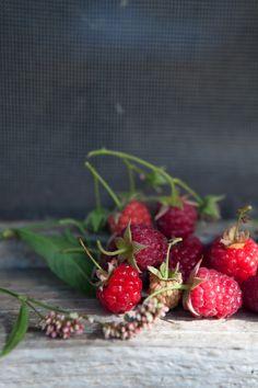 wild raspberries. photo by Aran Goyoaga