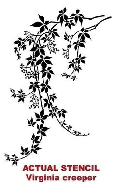 Wall stencil of wild med. - Reusable stencils better than decals Wall stencil Virginia Creeper MED. by CuttingEdgeStencils Stencil Patterns, Stencil Designs, Embroidery Patterns, Large Wall Stencil, Stencil Wall Art, Wall Stenciling, Stencil Decor, Virginia Creeper, Creepers