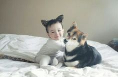 시바견과 아기 :)