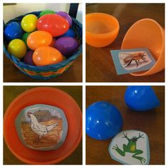 Oviparous (Egg Laying) Game: Students draw an egg and open it. They have to act like that animal. Other students guess the animal.