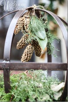 Fill a metal orb with evergreen branches and hang magnolia cones from the top. Pretty winter display