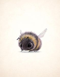 Bumblebee, Sydney Hanson, through @petratweeting