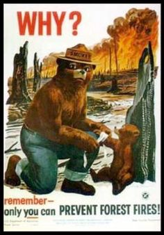 After 70 years the ads are appearing again for Smokey the Bear, since folks that go into the forest, still don't know how to put out campfires...It's not rocket science people...If you know how start a fire, you should know how to put it out...Before, there are NO MORE forests in North America...