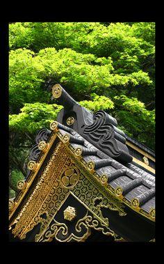Golden leaves|Toshogu shrine, Nikko #tochigi #Japan
