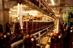 Enjoy free brewery tour and a few of the 50 different styles of beer at Schlafly Bottleworks
