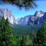#Yosemite National Park, California, United States � Travel Guide  #Travel United States - We cover the world over 220 countries, 26 languages and 120 currencies Hotel and Flight deals.guarantee the best price multicityworldtravel.com