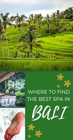 With so many to pick from, it's hard to find the best spa in Bali. Here's a list of 23 amazing Bali spa, for all needs and budgets. Bali Travel Guide, Thailand Travel, Cambodia Travel, Travel Tips, Medan, Landscape Photography, Travel Photography, Portrait Photography, Wedding Photography