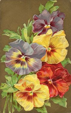 Beautiful Multi-Colored Pansies; Gold Foil Background; Vintage Postcard