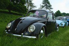 I <3 VW Bugs!!!