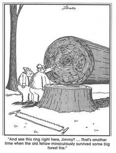 Image result for larson's far side""