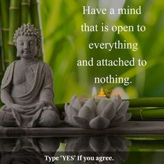 Have a mind that is open to everything and attached to nothing. Buddhist Teachings, Buddhist Quotes, Spiritual Quotes, Wisdom Quotes, Positive Quotes, Me Quotes, Motivational Quotes, Inspirational Quotes, Attachment Quotes